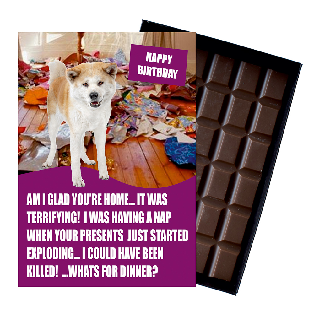 Akita Inu Funny Birthday Gift for Dog Lover Or Owner 85 Gram Boxed Chocolate for Man