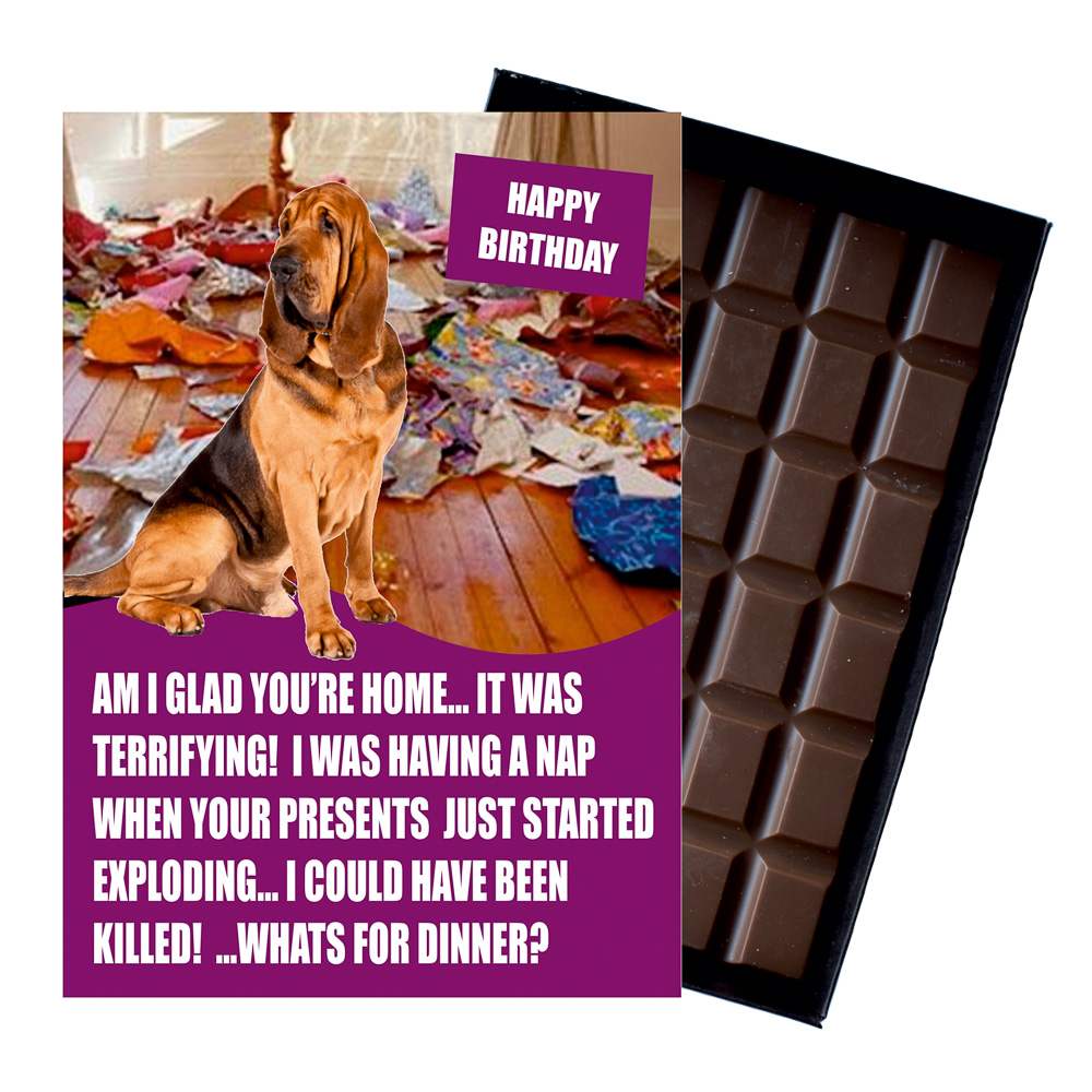Bloodhound Funny Birthday Gift For Dog Lover Or Owner 85 Gram Boxed Chocolate Man