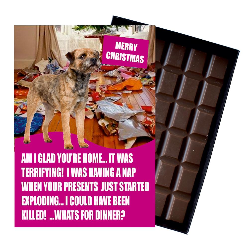 border terrier funny christmas gift for dog lover boxed
